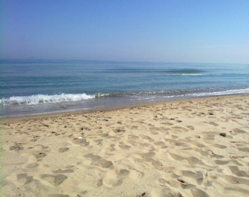 Playa-de-LArbre-del-Gos
